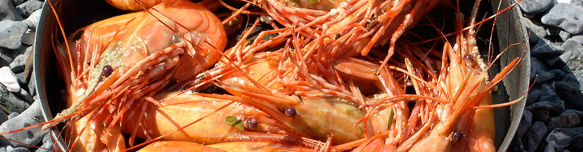 Alaska Tiger Prawns Shrimp in Pot at Beach Cookout The Lodge at Whale Pass